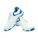 Men's Golf Shoe PGM Leather – Black- Blue